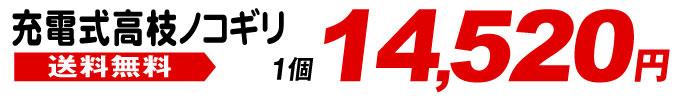 充電式高枝ノコギリ・14520円