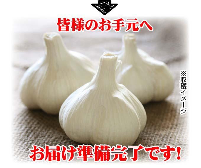 福地ホワイト六片