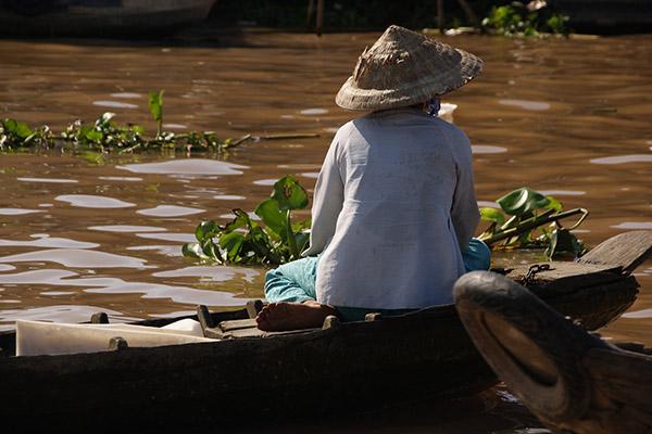 メコン川のココナッツ