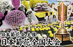 日本菊花会