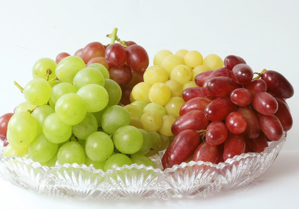 ブドウの育て方