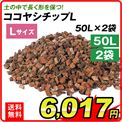 ココヤシチップL