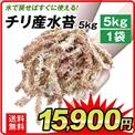 チリ産水苔5kg2