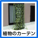 植物のカーテン